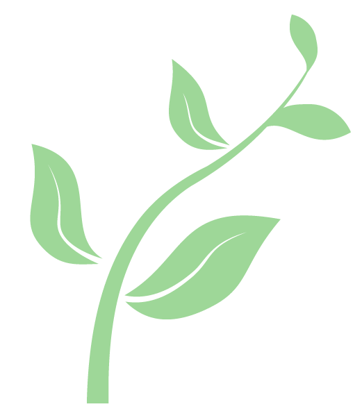 seedling graphic