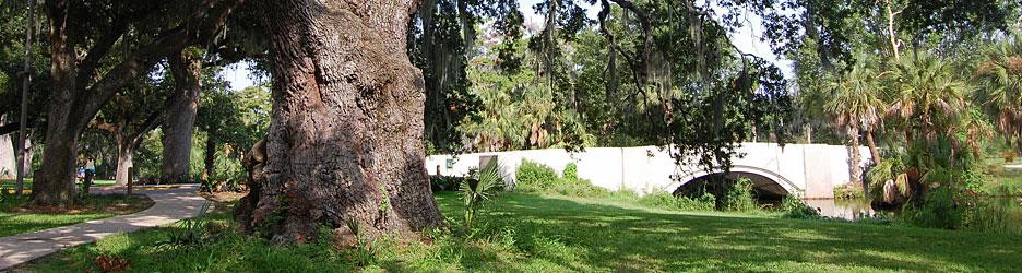New Orleans' City Park